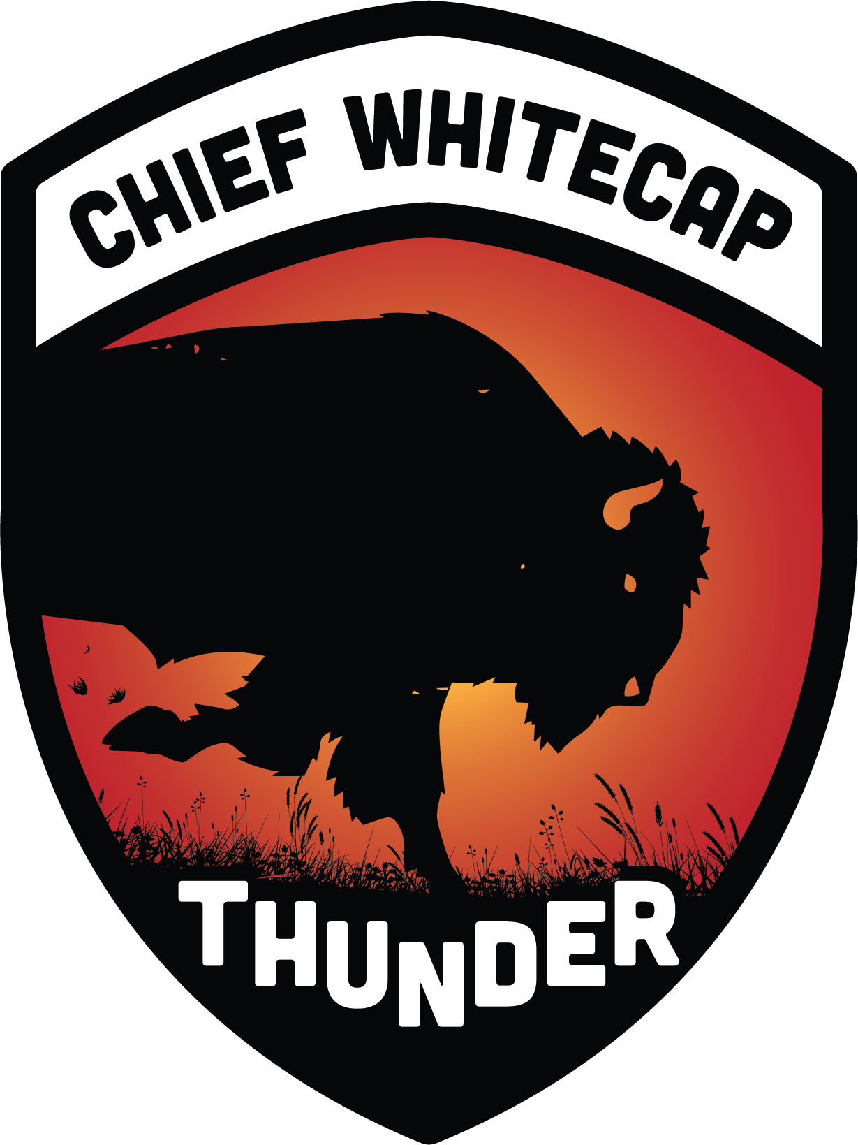 Chief Whitecap School logo