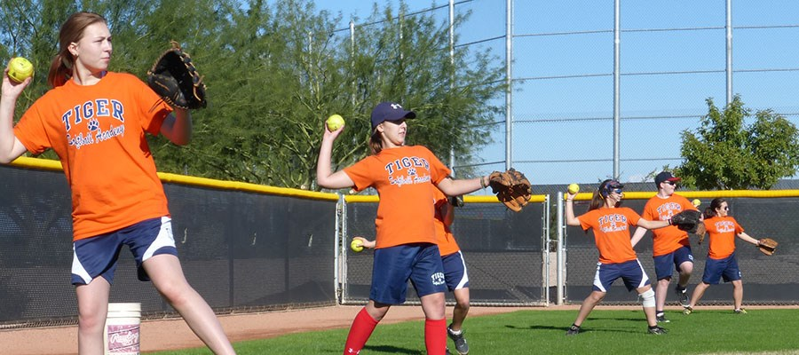 Tiger Softball Academy combines sport and school